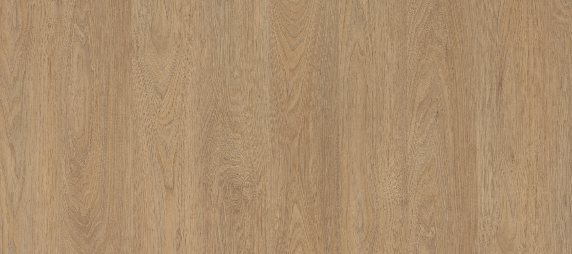 Era Laminates Collection with Walnut Laminate-Sundek International