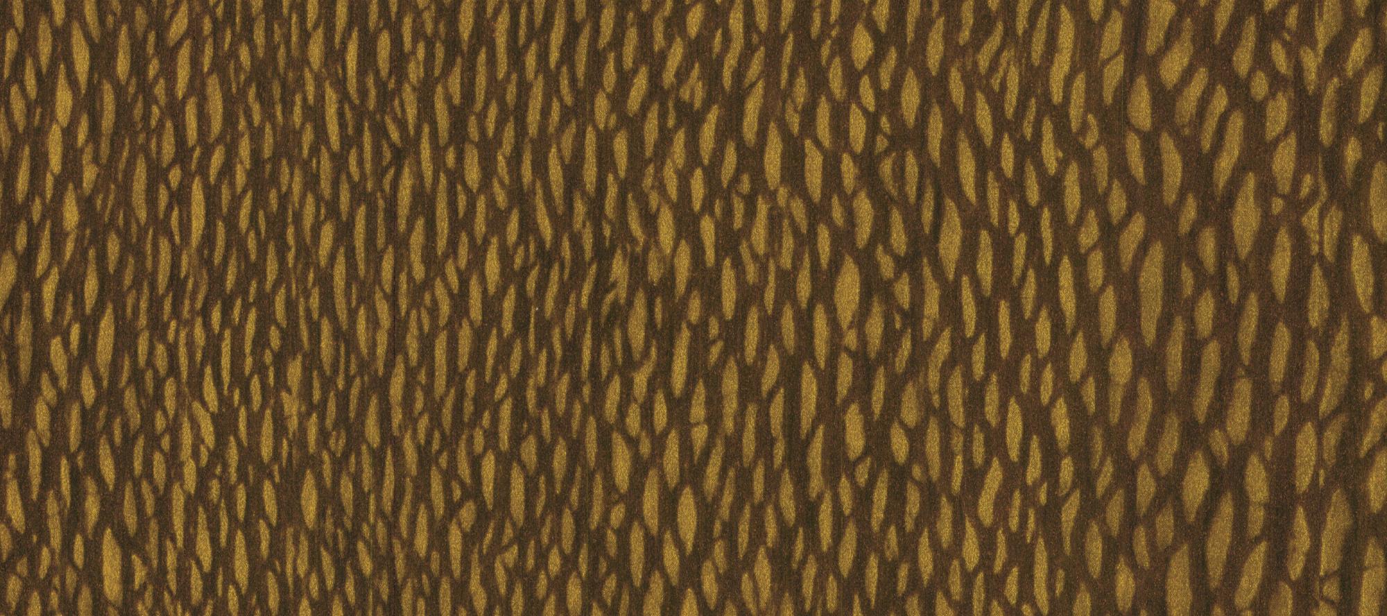 1786 Copper Lacewood Laminate